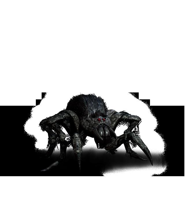 png transparent library Arachnomorph