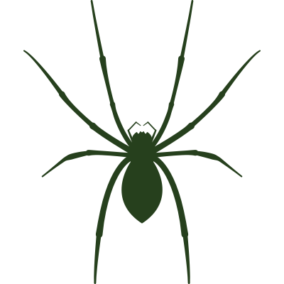 image royalty free library Spider Control