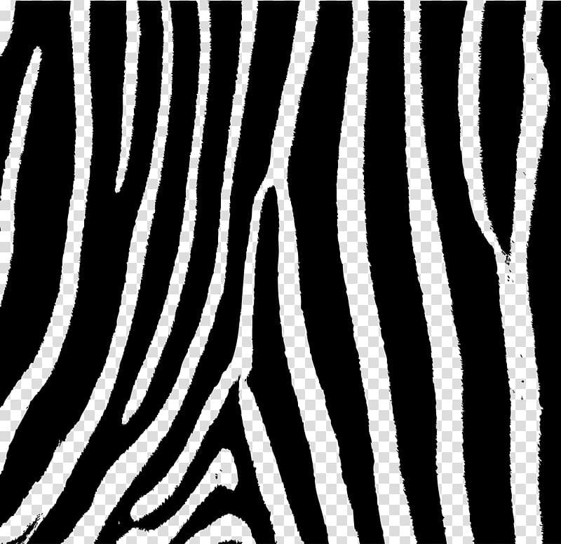 library Transparent stripes animal. Zebra patterning stripe background