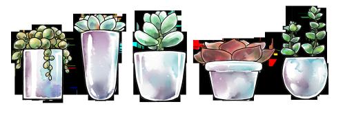 picture freeuse transparent succulents