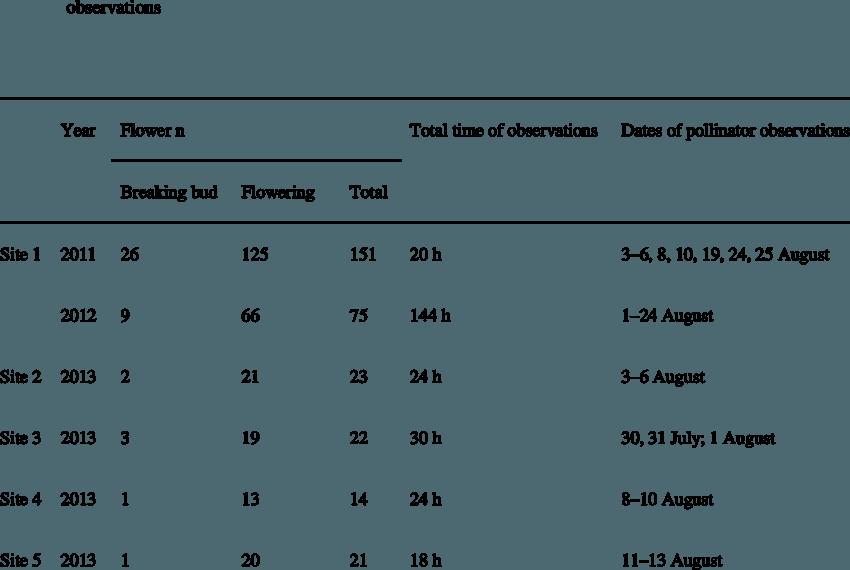 png transparent download Target flower number