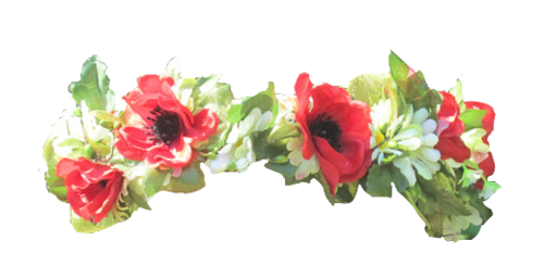 banner transparent transparent flower crown