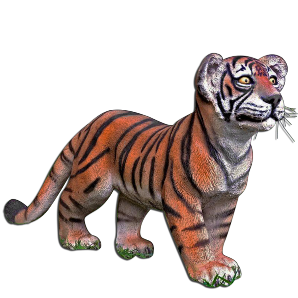 image stock Transparent tiger standing. Cub platinum prop rentals