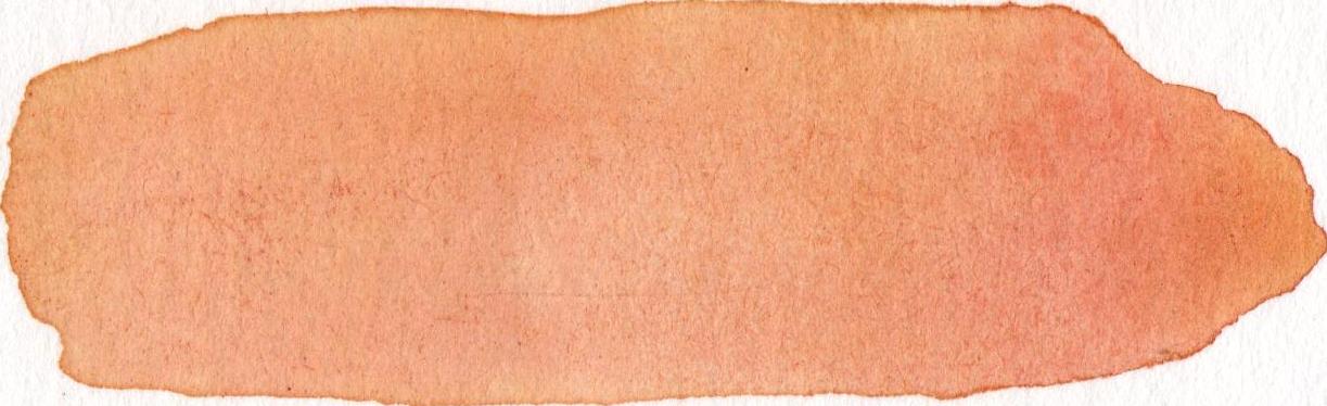 vector transparent watercolours peach #106971351