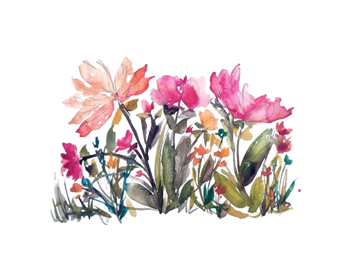 jpg black and white download like request flower watercolor requested reblog transparent