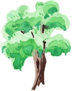 clipart library download transparent watercolours tree #106974016