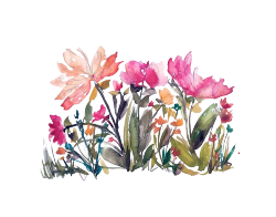 banner freeuse library like request flower watercolor requested reblog transparent