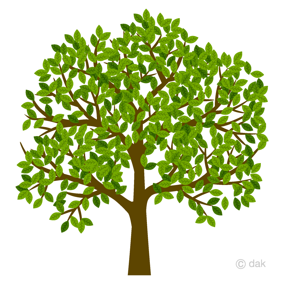 graphic library library Tree clipart. Many leaves free picture.