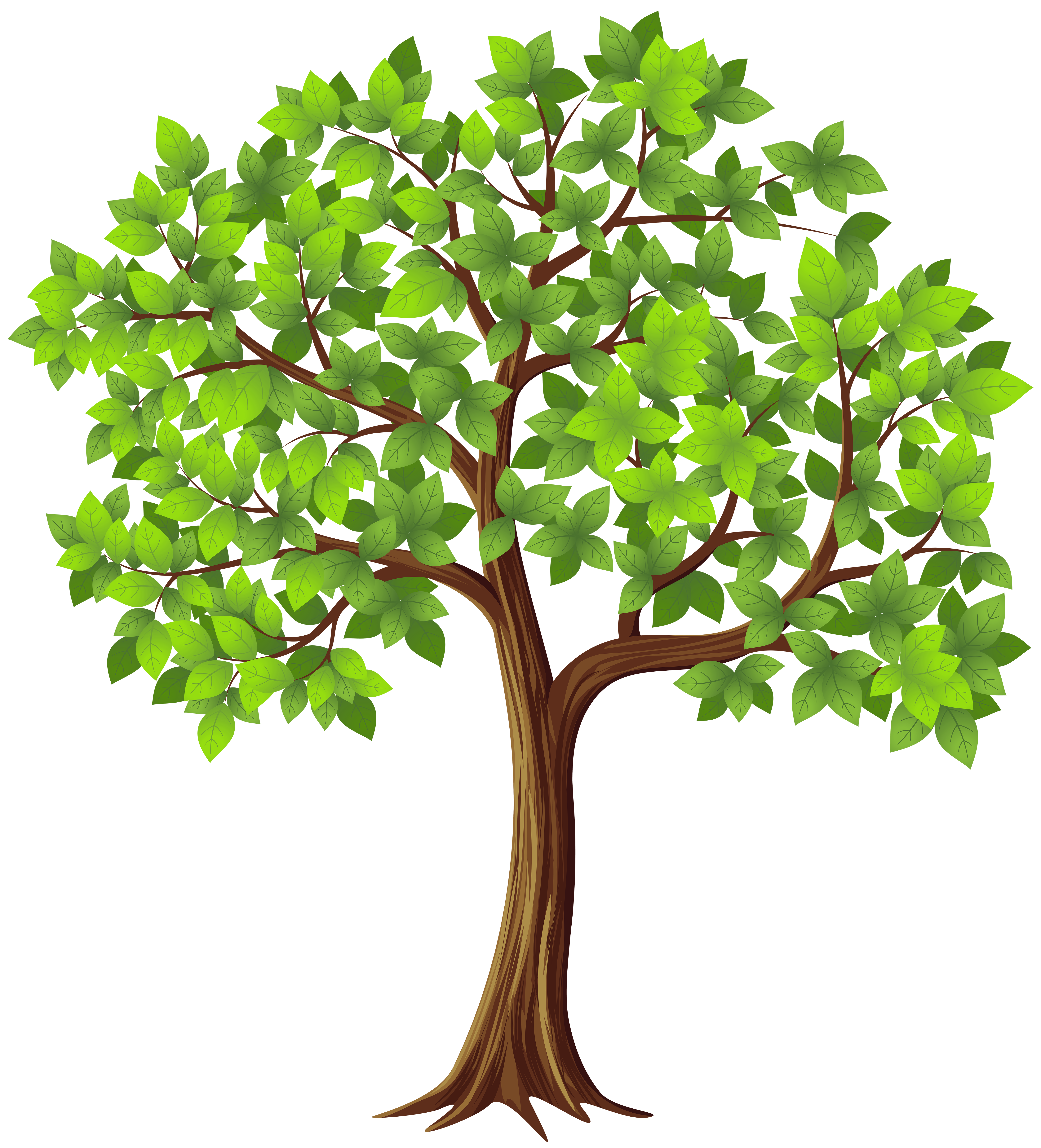 royalty free download Tree clipart. Png transparent clip art.