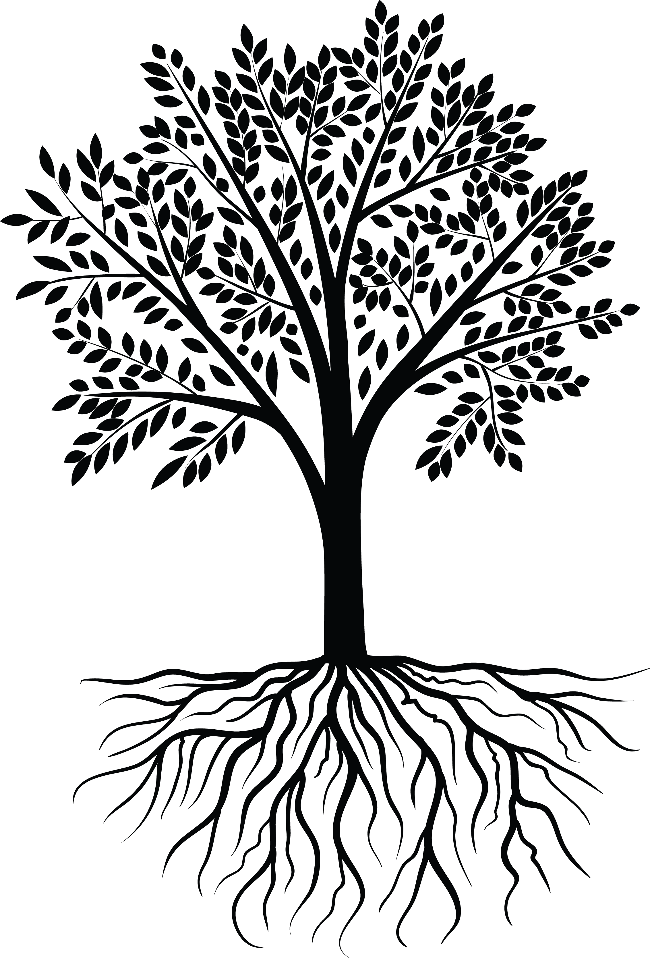 svg royalty free download Tree Vector Black White