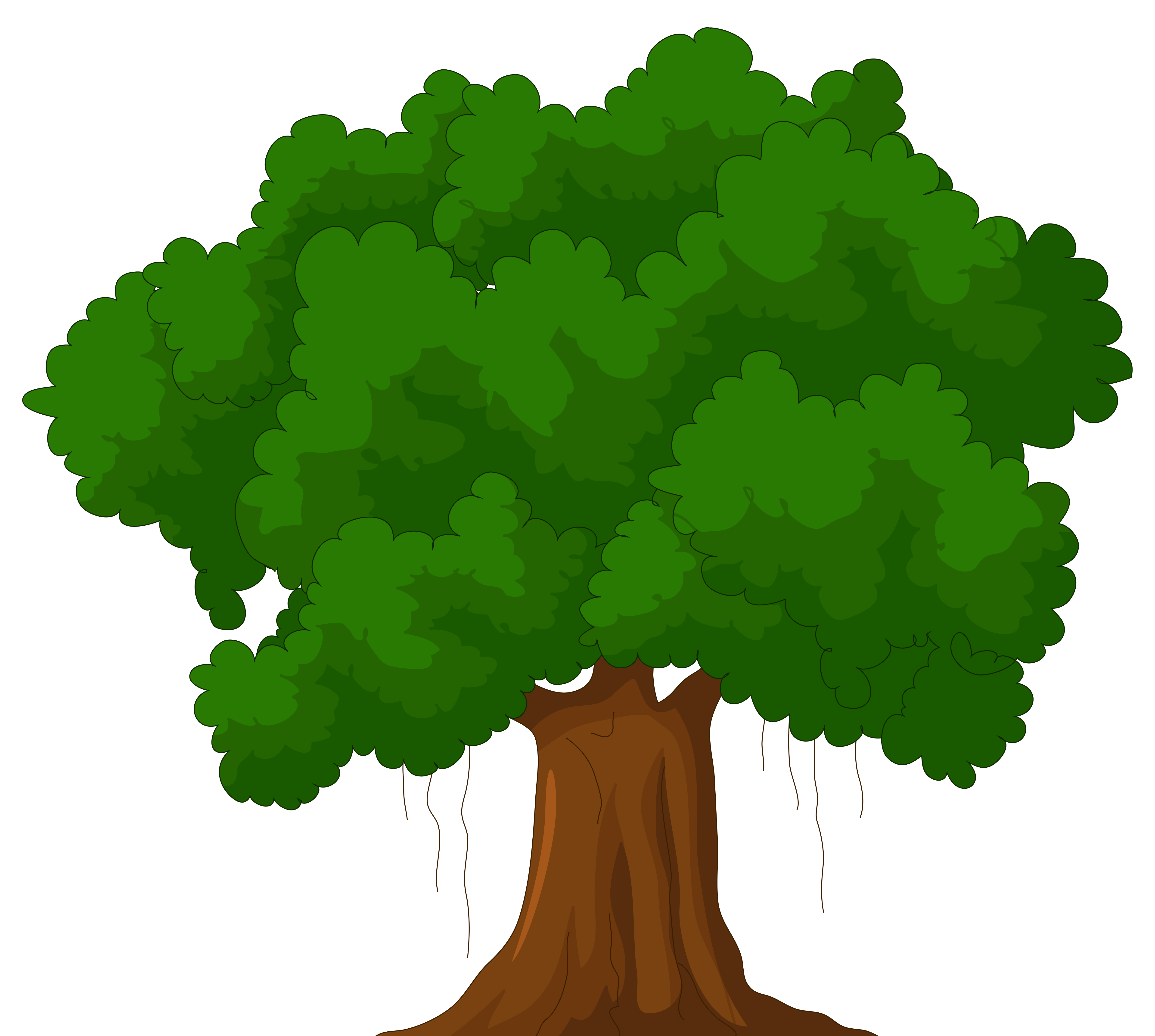 picture transparent library Cartoon green tree png. Trees clipart