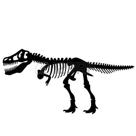 jpg royalty free stock T rex dinosaur skeleton. Bones vector trex