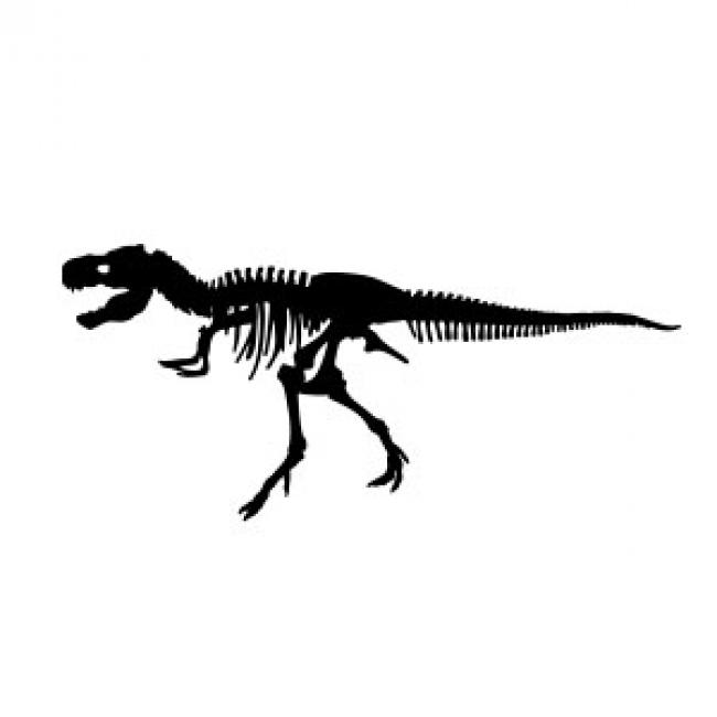 clip royalty free library Bones vector trex. Free vectors t rex