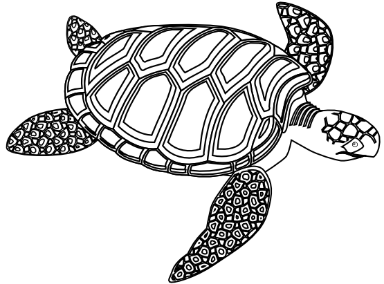 vector freeuse download Sea Turtle Tattoo Black And