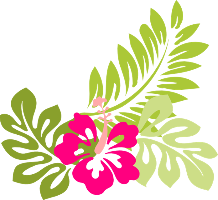 jpg freeuse Image tropical flower clip. Lantern clipart hawaiian.