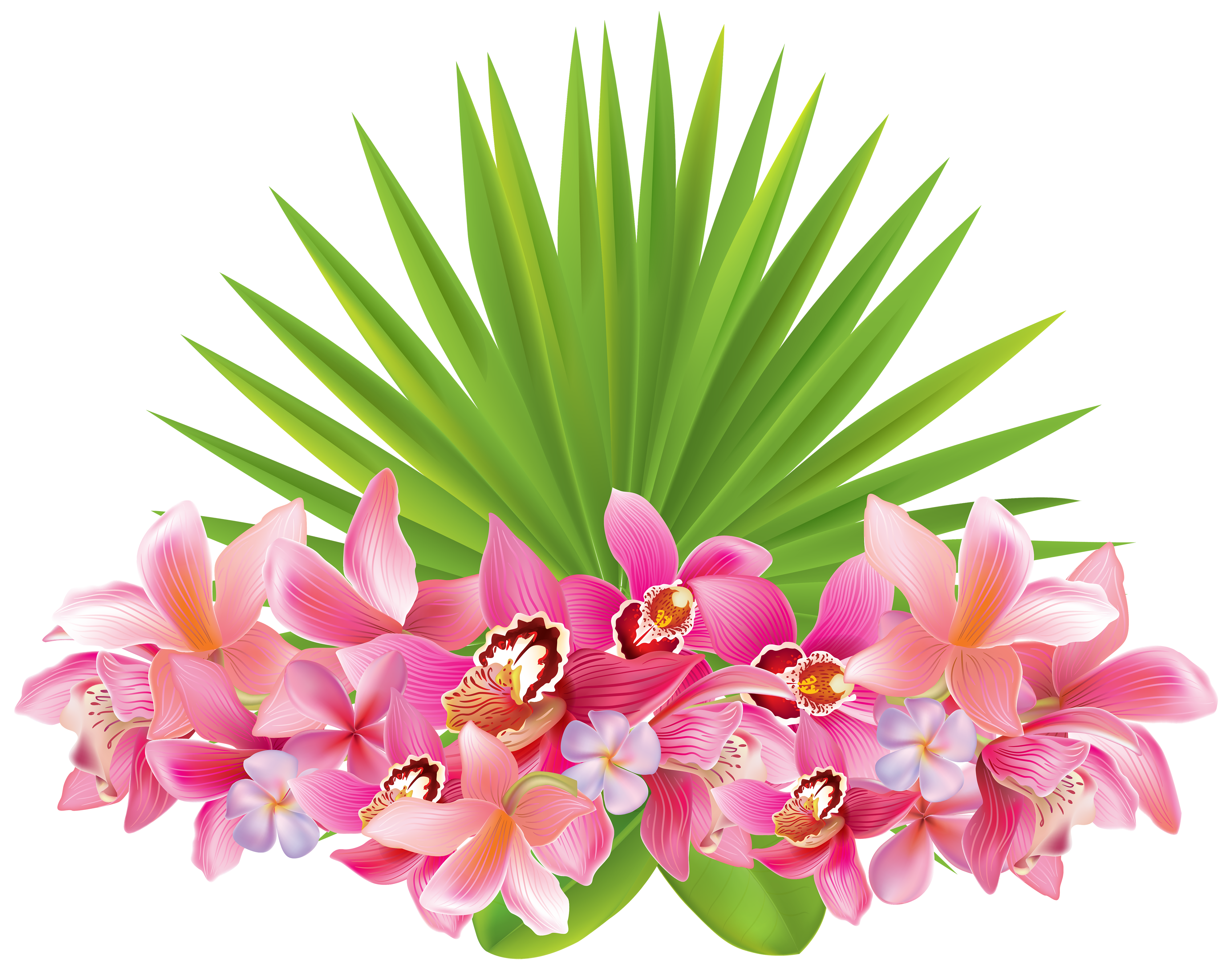 svg free Tropical clipart. Flowers png image gallery