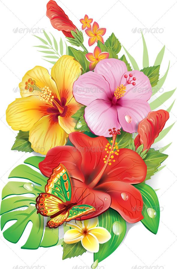 jpg library Tropical drawing exotic flower. Pin by teachayshoio on