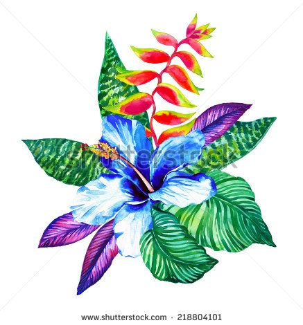 svg royalty free stock Tropical drawing exotic flower. Pin on flowers