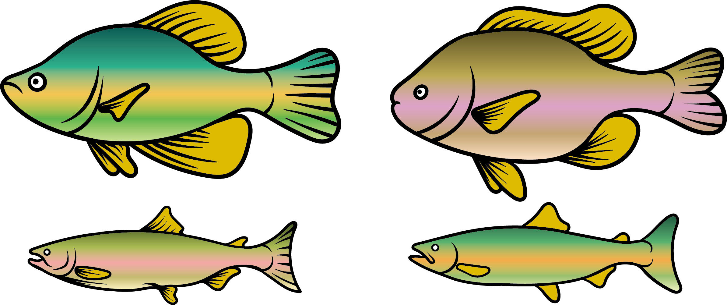 vector black and white stock Rainbow Trout Clipart at GetDrawings