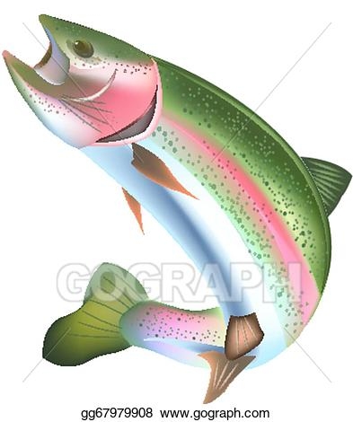 jpg download Trout clipart rainbow trout. Vector art drawing gg