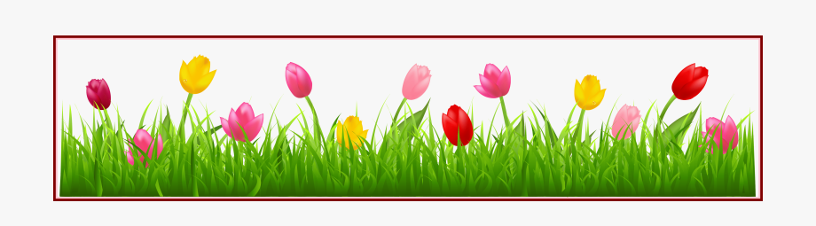 image royalty free library Tulip border clipart. Spring clip art