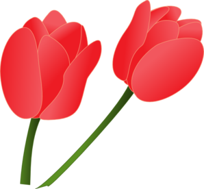 svg library Red tulip clip art. Tulips clipart.
