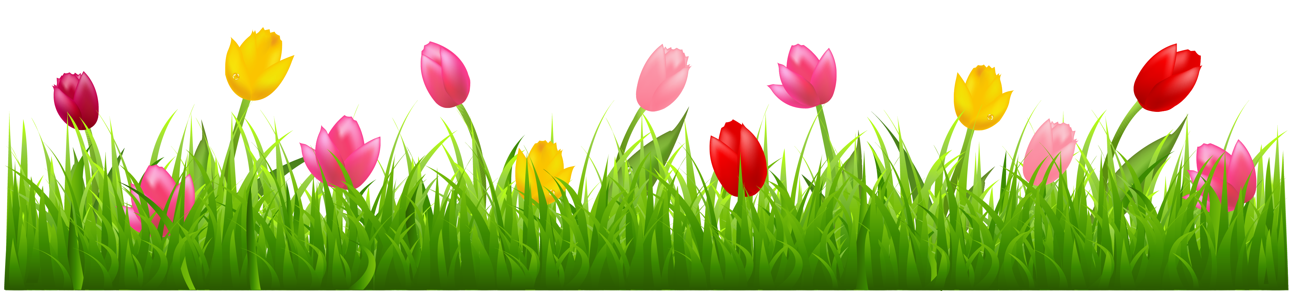 freeuse stock Grass with Colorful Tulips PNG Clipart