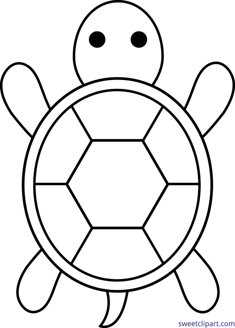 png free download Lineart clip art baby. Turtle black and white clipart