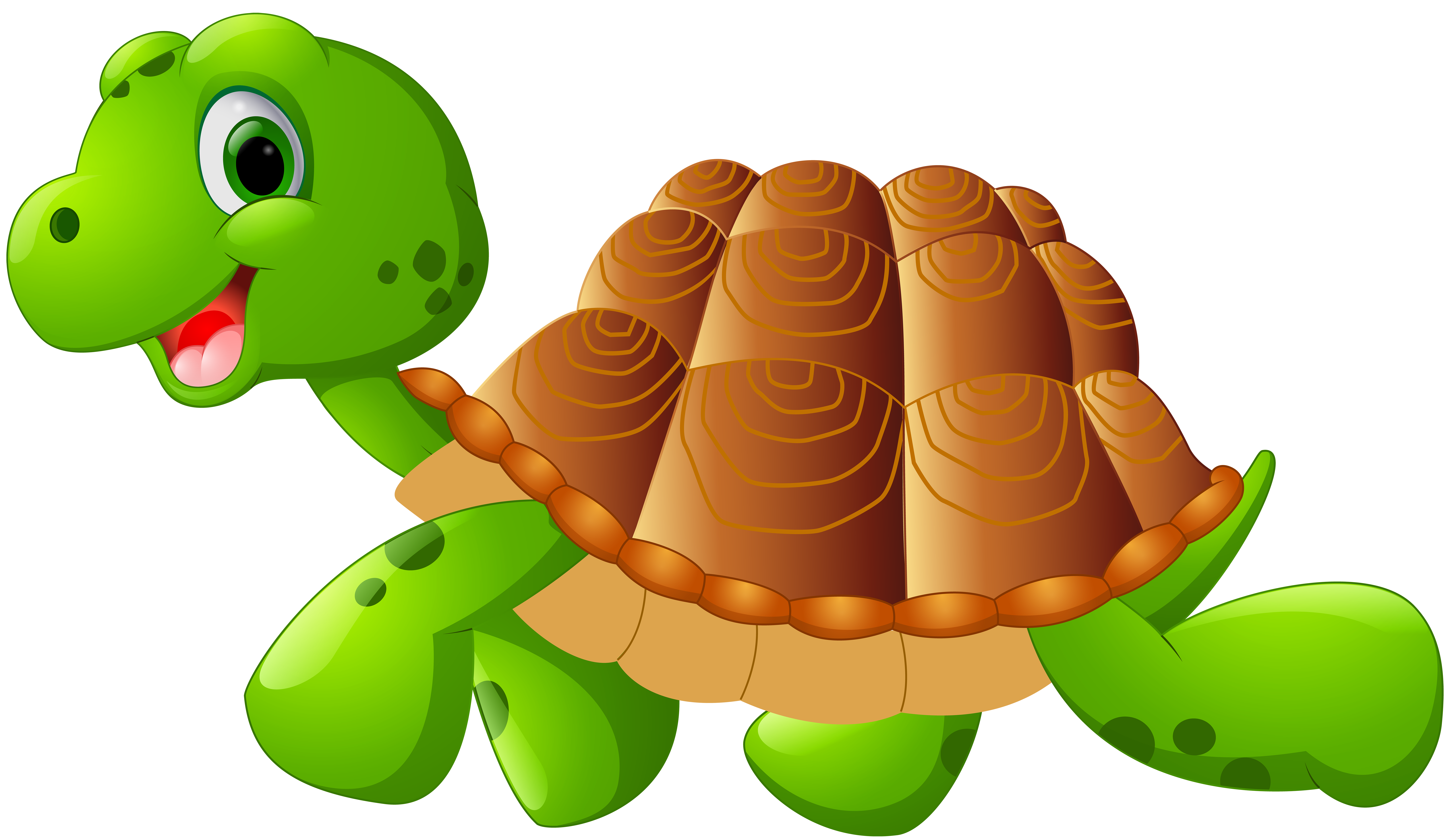 clip  collection of transparent. Turtle clipart