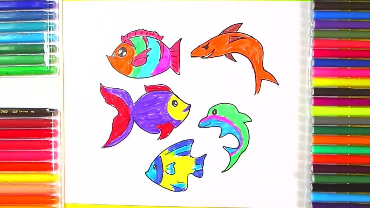 jpg freeuse download How to draw fish. Types drawing color
