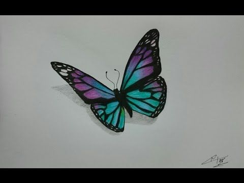 freeuse library Types drawing colourful butterfly. Pin on draw this
