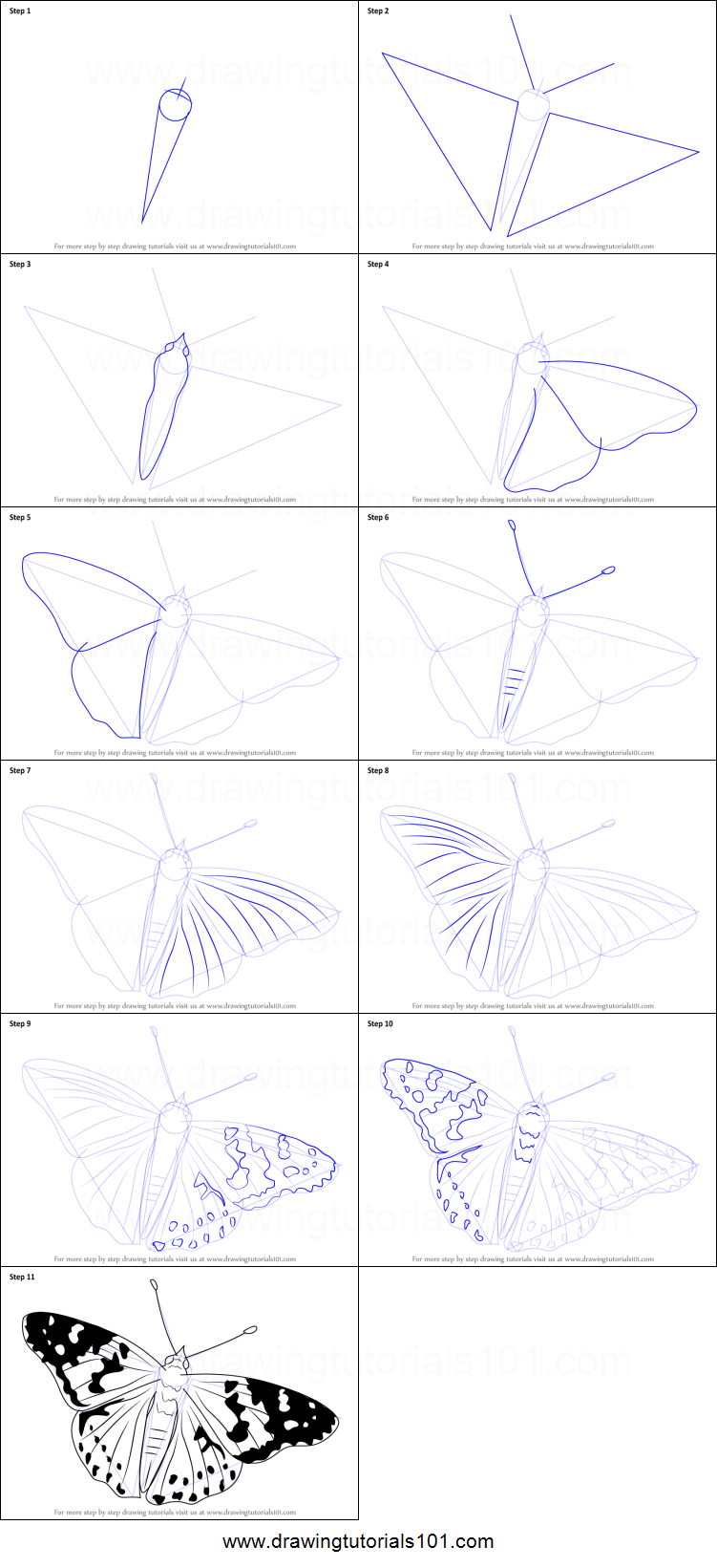 clip transparent download Types drawing colourful butterfly. The painted lady is