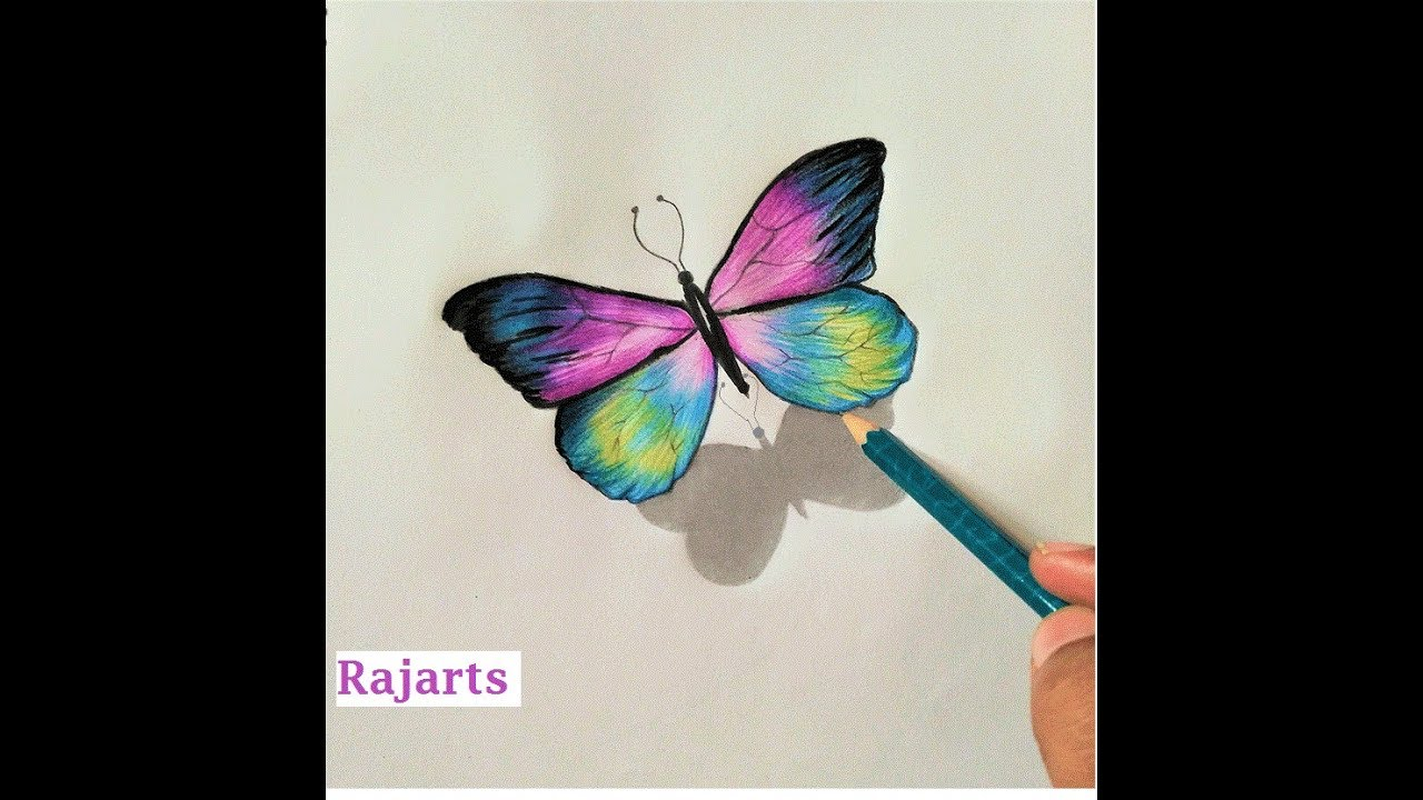 graphic transparent stock How to draw amazing. Types drawing colourful butterfly