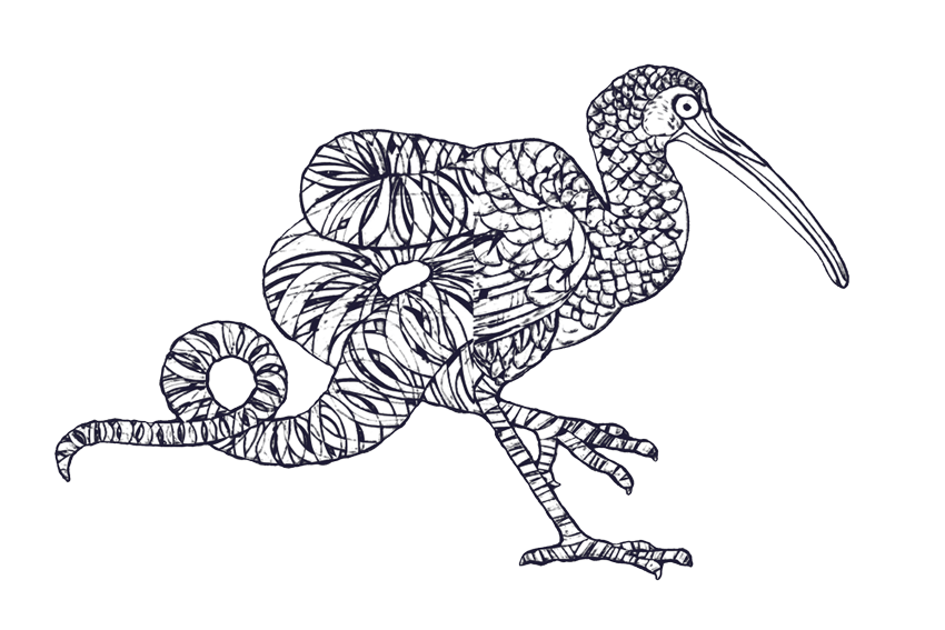 image royalty free library Typography drawing animal. Faune an incredibly intelligent