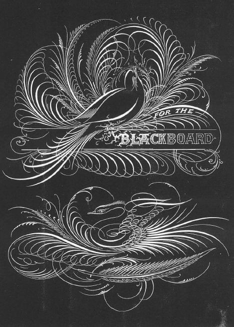 picture freeuse download Typography drawing bird. Blackboard calli