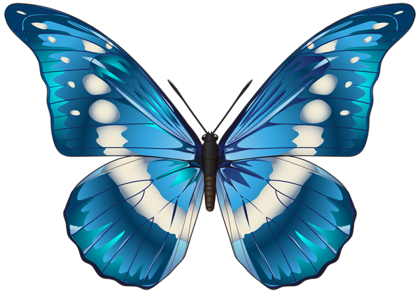 png transparent stock Butterfly Blue PNG Clip Art Image