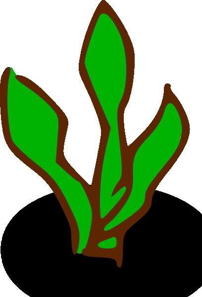 jpg freeuse seaweed vector aquatic plant #102816244