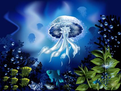 clip free download Underwater vector element. Pretty world free download.
