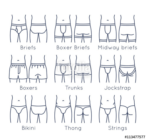 png library stock Underwear vector different style men. Male types flat line