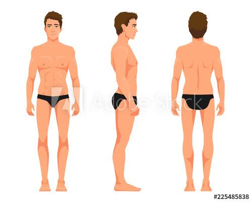 image transparent download Underwear vector man. Illustration of three men