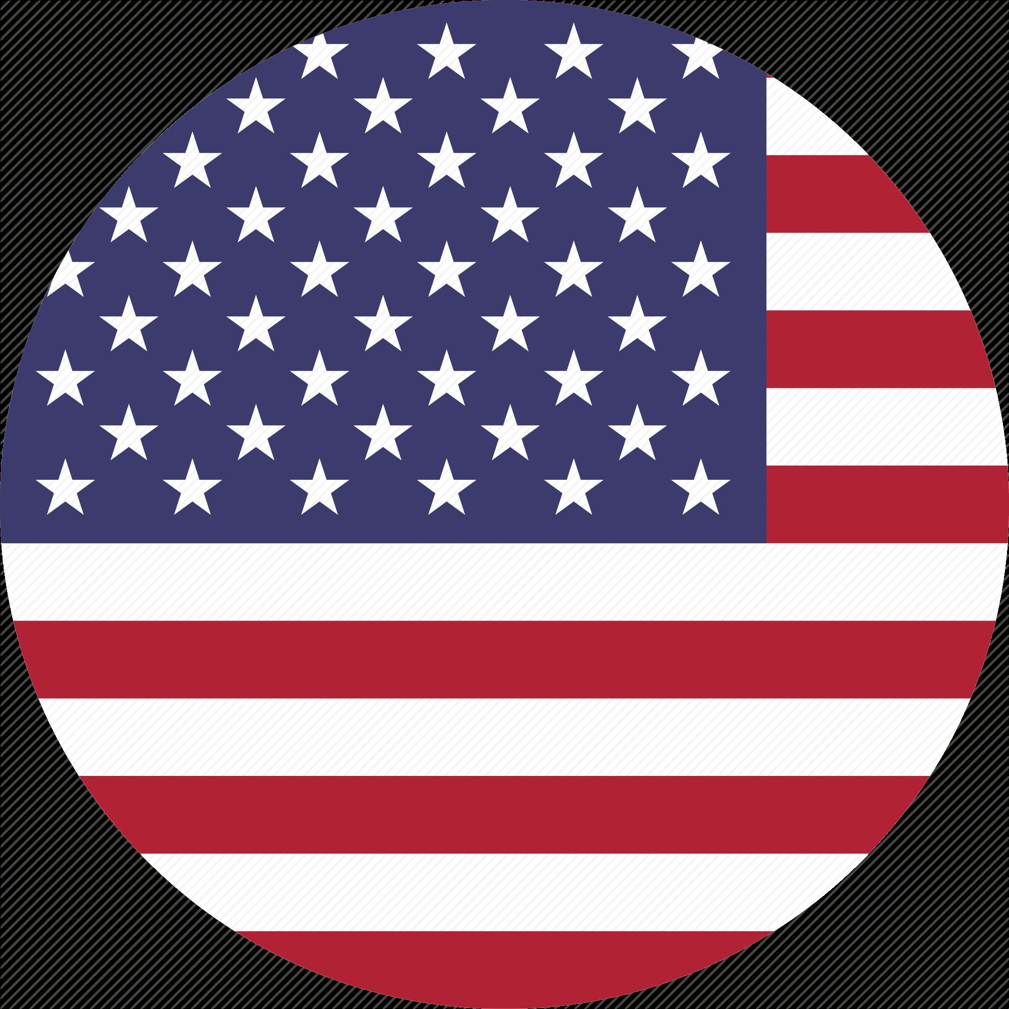 svg royalty free stock Image of USA Flag