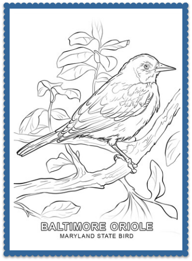 clip freeuse download State bird pages by. Usa drawing coloring page