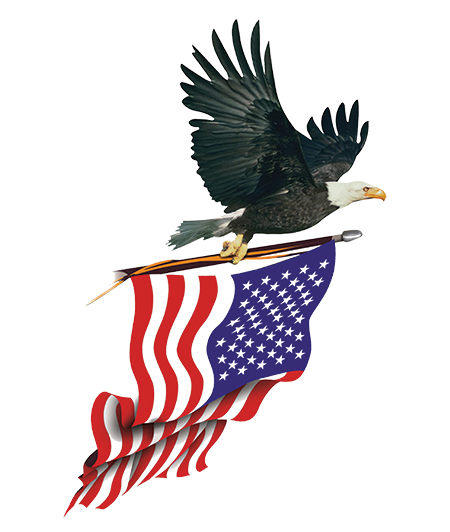 clipart royalty free library Usa transparent eagle.  png for free