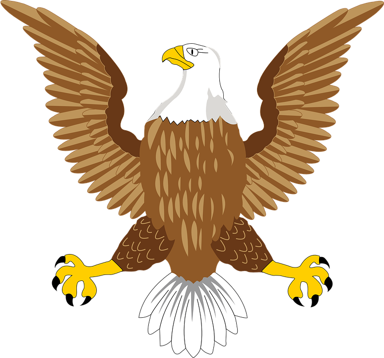 clip art library library  collection of clipart. Usa transparent eagle