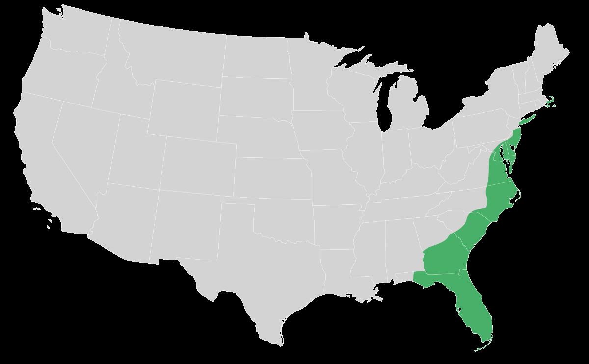 image black and white stock Usa transparent plain. Atlantic coastal wikipedia