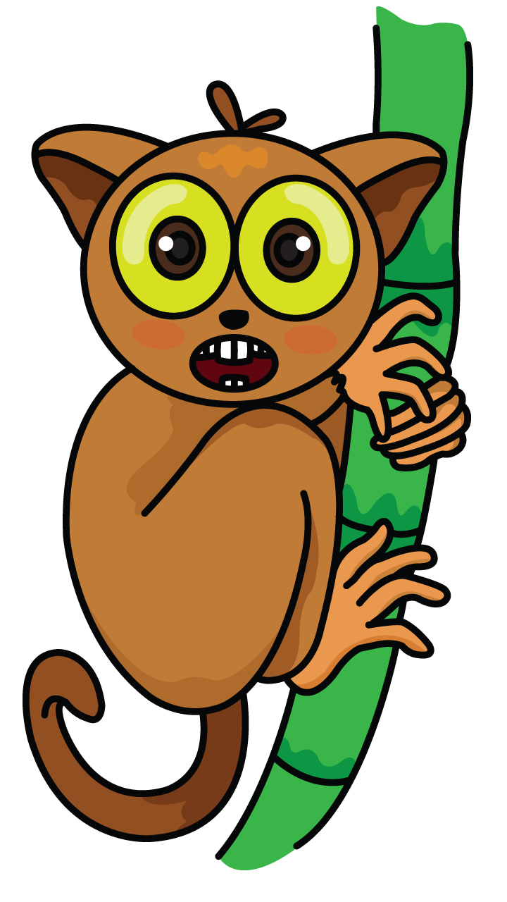 clipart library download Tarsier drawing tutorial http