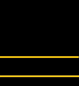 vector black and white Formula