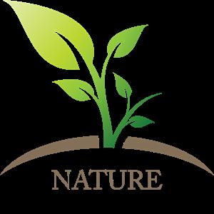 png freeuse stock Vector emblem leaf. Nature green logo ai