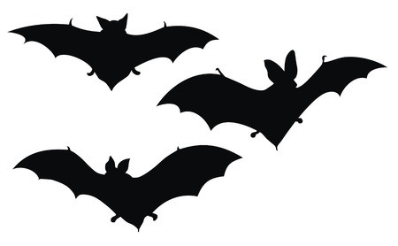 jpg black and white Abstract vector illustration of bats silhouette