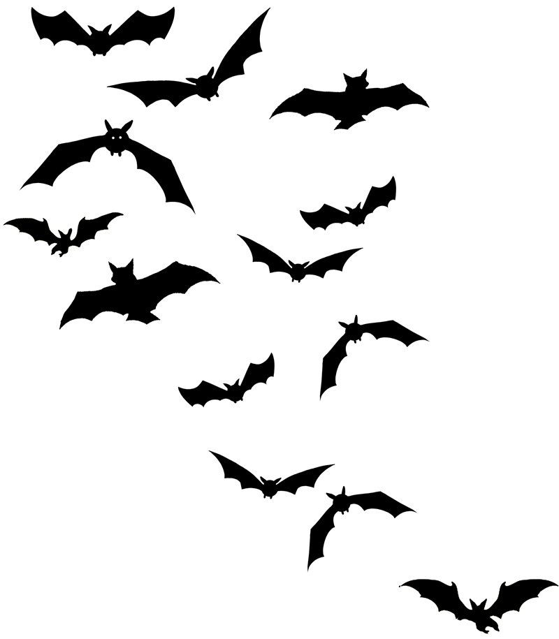 vector free I want a flock of bats tatted somewhere on me